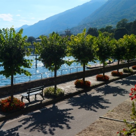 Tree lined streets of Tremezzo, Lake Como