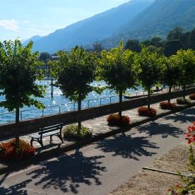 Tree lined streets of Tremezzo, Lake Como